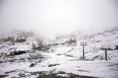 Osservi la nevicata della neve del paesaggio coperta sul pino in cima alla montagna Immagine Stock Libera da Diritti