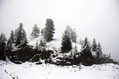 Osservi la nevicata della neve del paesaggio coperta sul pino in cima alla montagna Immagini Stock