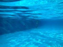 Osservi la piscina con le piastrelle di ceramica sotto l'acqua blu, il punto di vista subacqueo della gente nello stagno in un ce fotografie stock