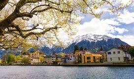 Osservi sulla montagna delle alpi e sulla città di Interlaken sulla molla in Svizzera Fotografie Stock