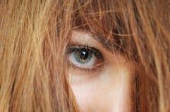 Osservi tramite capelli fotografia stock libera da diritti