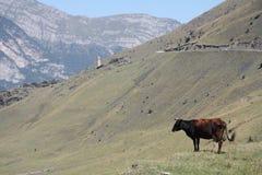 Ossetian landschap Royalty-vrije Stock Afbeelding