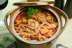 Osso Bucco. Delicious slow roasted osso bucco ready to serve stock image