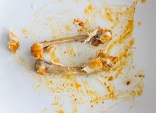 Osso da galinha Fotos de Stock