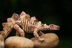 Osso di dinosauro nella fine su stile Fotografia Stock