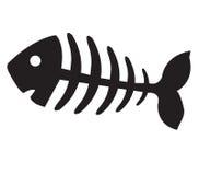 Osso di pesce, scheletro del pesce Fotografia Stock