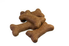Ossos de cão Fotos de Stock