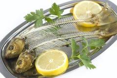 Ossos de peixes Imagem de Stock Royalty Free