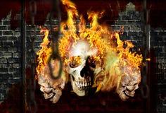 Ossos no incêndio 03 Fotografia de Stock