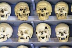 Ossuarium stock afbeeldingen