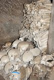 Ossuary with stacks of Skulls and bones. royalty free stock image