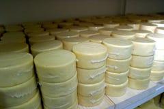 ost arkivfoton