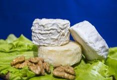 Ost av tre variationer på en platta med grönsallatsida- och valnöthelgonet-remy, Crottin D Eyubonne, Shayba Arkivfoto