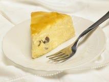 Ost bakade kakan med aprikosdriftstopp och russin Arkivbild