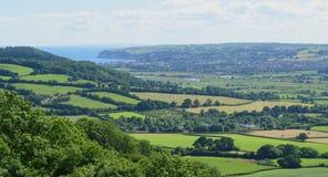 Ost-Devon Stockfoto
