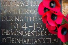 OST- GRINSTEAD WEST-SUSSEX/UK - 13. NOVEMBER: Mohnblumen auf dem Krieg stockbild
