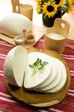 ost mjölkar traditionell slovak för s-fårskivan arkivfoton