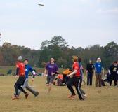 ostateczny frisbee turniej Fotografia Stock