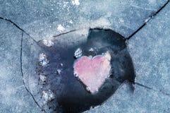 Ostatni miłość bodziec Obrazy Stock