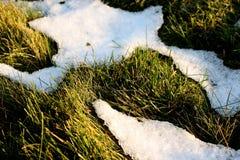 ostatni śnieg Obraz Royalty Free