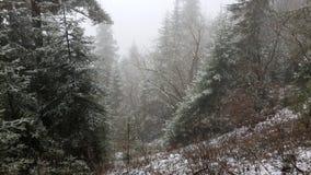 Ostatni śnieg w górach Zdjęcia Royalty Free