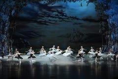 Ostatnia scena Łabędzi baleta Łabędź jezioro Obraz Royalty Free
