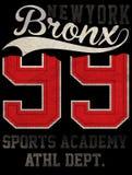 Ostente a tipografia atlética da faculdade, gráficos do t-shirt, vetores Foto de Stock