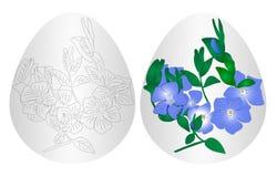 Osterei-Blumenhintergrund Stockfotografie
