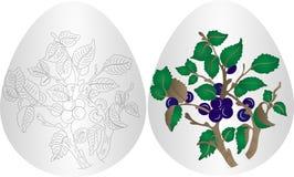 Osterei-Blumenhintergrund Stockfotos
