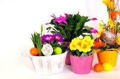 Osterei-Blumenvorbereitungen Stockfotos