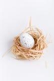 Osterei im Gras und im Nest Lizenzfreie Stockbilder