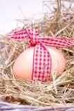 Egg im Heunest mit rotem weißem Band Stockbilder