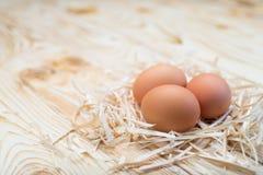 Osterei im Nest Stockbild