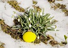 Osterei nahe Schneeflocken Lizenzfreie Stockfotos