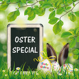 Osterei-Tafel-Hase-Ohr-Buche Oster-Special Lizenzfreies Stockbild