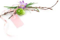 Osterei und Frühlings-Blumen-Hintergrund lizenzfreie stockbilder