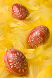 Ostereier. Stockbilder