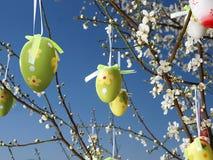 Ostereier auf Baum Stockbilder