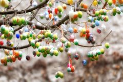 Ostereier auf Baum Stockfoto