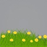 Ostereier auf dem gr?nen Gras lizenzfreie abbildung