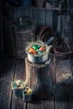 Ostereier Colourfull im Nest mit Heu Stockbilder