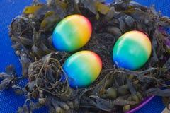 Ostereier in den Seeanlagen Lizenzfreies Stockfoto