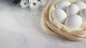 Ostereier in den weißen Blumen des Nestes und des Frühlinges auf weißem Hintergrund Kopieren Sie Raum für Text Lizenzfreies Stockbild