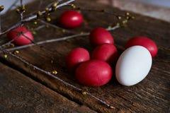 Ostereier der roten Farbe auf einem hölzernen Hintergrund, zusammen mit Herbst verzweigt sich Stockbild