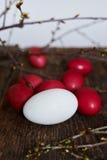 Ostereier der roten Farbe auf einem hölzernen Hintergrund, zusammen mit Herbst verzweigt sich Stockfoto