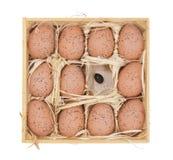 Ostereier in einem hölzernen Kasten lizenzfreie stockfotos