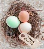Ostereier in einem Nest mit Marke Stockfotografie