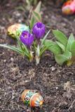 Ostereier, Frühlingsblumen Stockfotografie