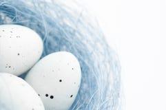 Ostereier im blauen Nest Stockbild