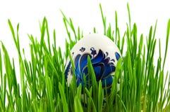 Ostereier im grünen Gras Lizenzfreie Stockbilder